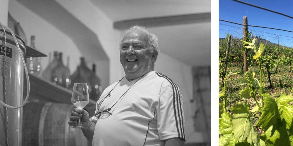 La cantina de la Azienda Vinicola  Allegretti a Barile, borgo del Vulture con alta presenza di cantine scavate nel tufo. Potenza. Basilicata. South Italy.  tutti i diritti d'uso delle immagini riservati, ne e' vietato qualsiasi uso non licenziato dal fotografo che e' l'unico detentore dei dirittti d'uso. all rights reserved. prohibited any unlicenced use. Peppe Iovino 2017 peppeiovino.com